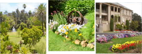 gardening as a relaxing hobby essay Gardening hobby essay: hobby is a particular and most interesting habit than other habit of any person hobby is a good thing which must be with everyone hobby is very necessary to be with everyone because it makes one busy and free mind.