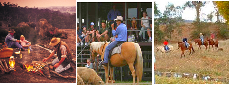 About over 50 Outback Farmstays, Station Stays & Rural Properties